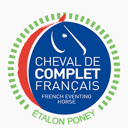 Label étalon poney
