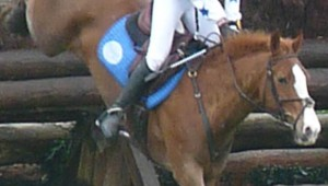 Grand prix poney de Pompadour : Camille Prud'home