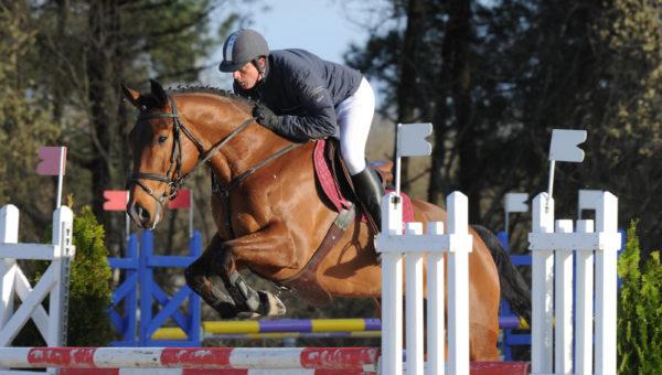 Les jeunes chevaux en prélude au Grand national