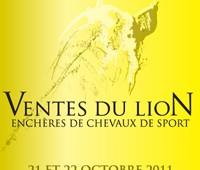 François Roemer présente les ventes du  Lion