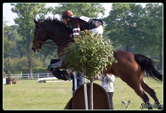 La team Galopro – Royal Horse : pour « côtoyer les meilleurs »