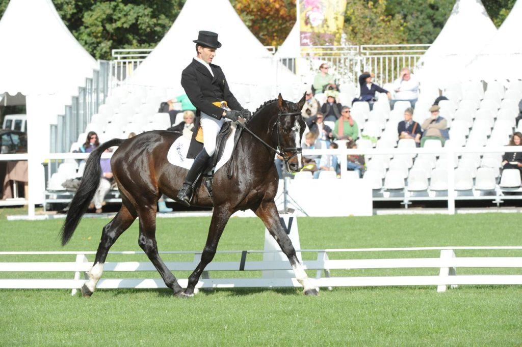 Jean Lou Bigot : de la motivation et du plaisir à monter ses chevaux