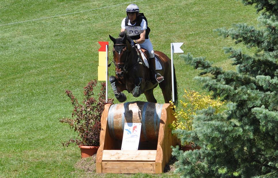 Les chevaux inspectés à Saumur en vue des Jeux