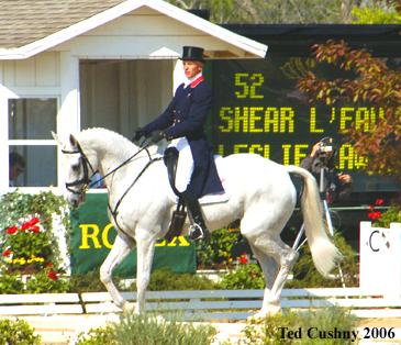 L'Irish Sport Horse : un cheval de Complet pour tous les niveaux !
