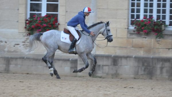 Les chevaux de Tom Carlile