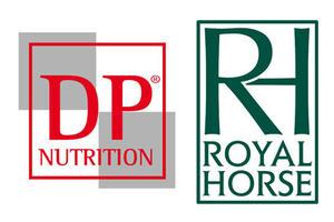 Conférence «Pratiques d'alimentation et d'entraînement dans des écuries de Haut niveau»