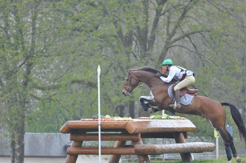 Les chevaux de Nicolas Touzaint
