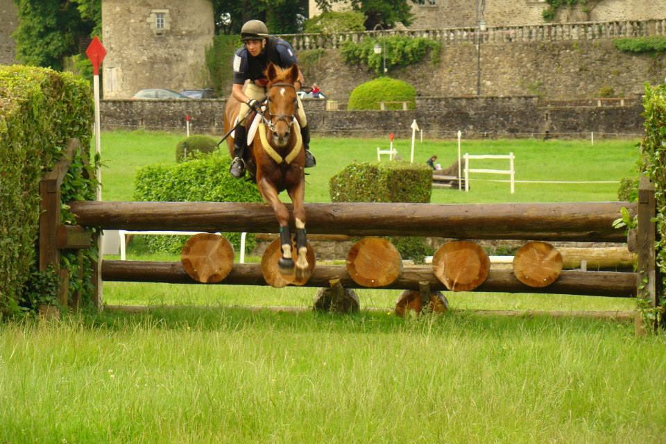 Maxime Griveaux : 4ème meilleur cavalier Jeunes Chevaux!