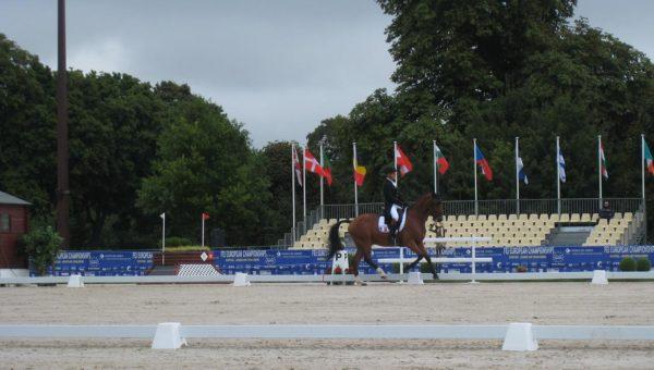 La Belgique et l'Allemagne à l'honneur au Haras de Jardy