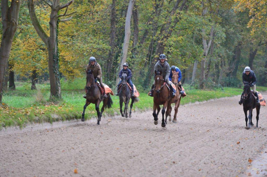 Lionel et Donatien sur un cheval de course