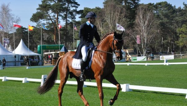 Houghton Hall : Luc Chateau gagne le dressage