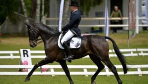 Saumur : Sylvain Davesne dans le top 10