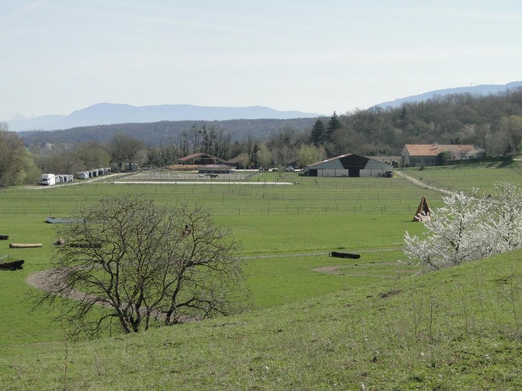 Vue d'ensemble des templiers depuis la colline