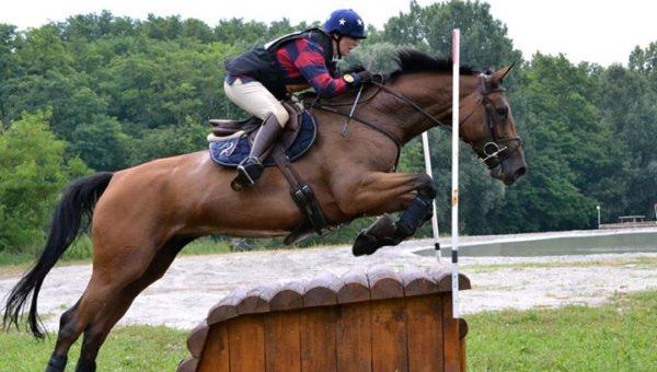 7 ans Amateur : Toundra de Revel et Tilburg récompensés