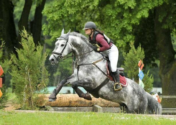 Chup a Chup : meilleur 7 ans Amateur à Fontainebleau