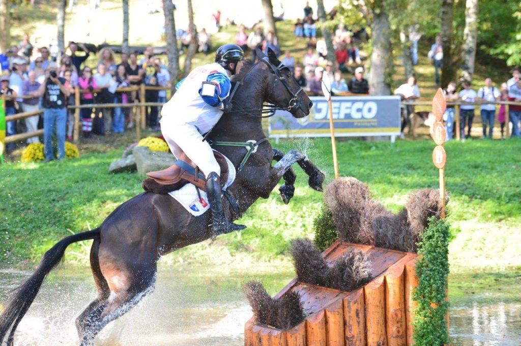 Les chevaux d'Eddy Sans