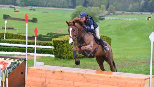 50 000£ pour les jeunes chevaux Anglais
