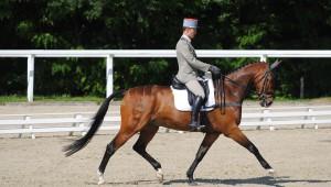 Le Lion d'Angers : Donatien Schauly indétrônable