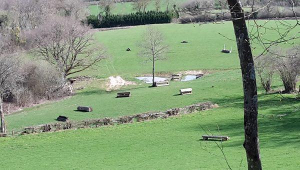 Saulieu : un nouvel international en Bourgogne