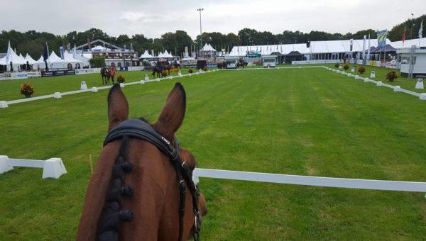 Boekelo : les commentaires des cavaliers et du staff