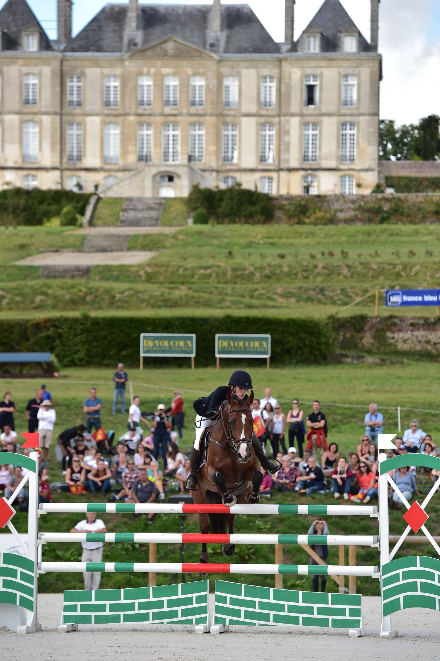 Grand Complet Haras du Pin 2015