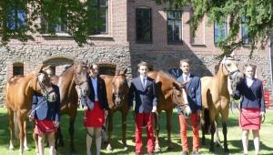 Poneys : la France en bronze