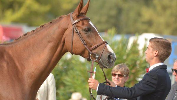 Alexis Goury : l'or et le bronze à Montelibretti !