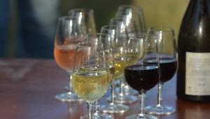 Du bon vin pour les fêtes !