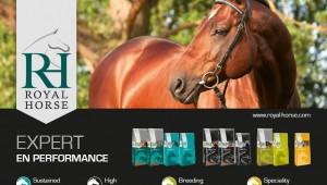 Les conseils de Royal Horse pour bien nourrir vos chevaux