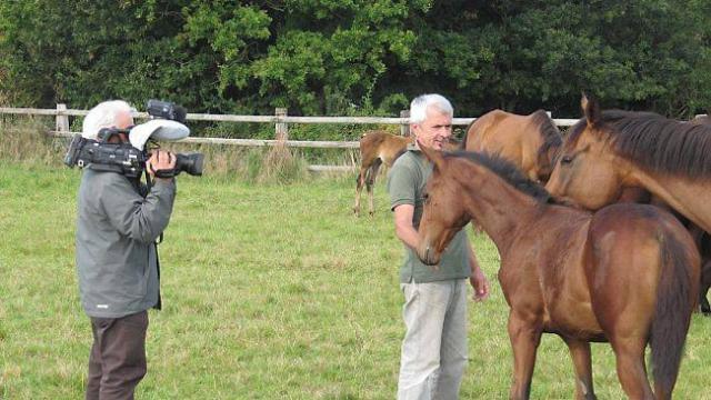 Yves Berlioz et ses chevaux - photo Ouest France