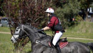 Mourmelon : Carlo Absolut Z, meilleur 7 ans Amateur