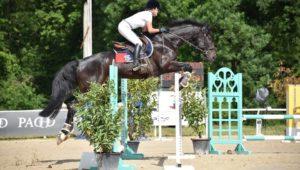 Vulbens : Dubaï de Hus, meilleur 7 ans Amateur