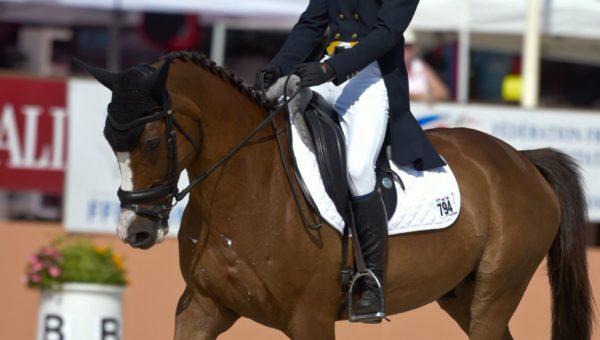 Portrait de Champions : Alban Moullière et Olympe des Bois