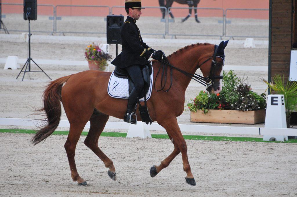 Boekelo J1 : la France 4ème
