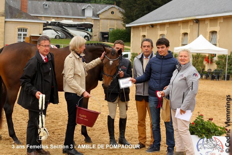 Amble de Pompadour AA, une victoire pour sa deuxième sortie en CCE