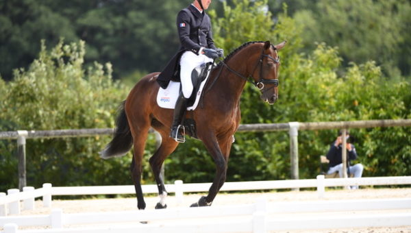 Boekelo J1 : Dressage de la Coupe des Nations