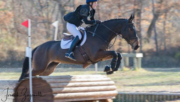 Avez-vous un cheval ou un poney de CCE à vendre ?