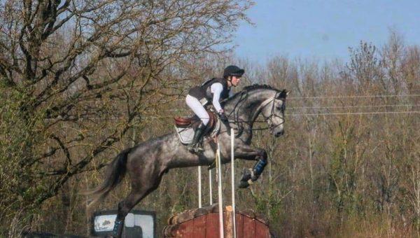 Les meilleurs jeunes chevaux à Brazey