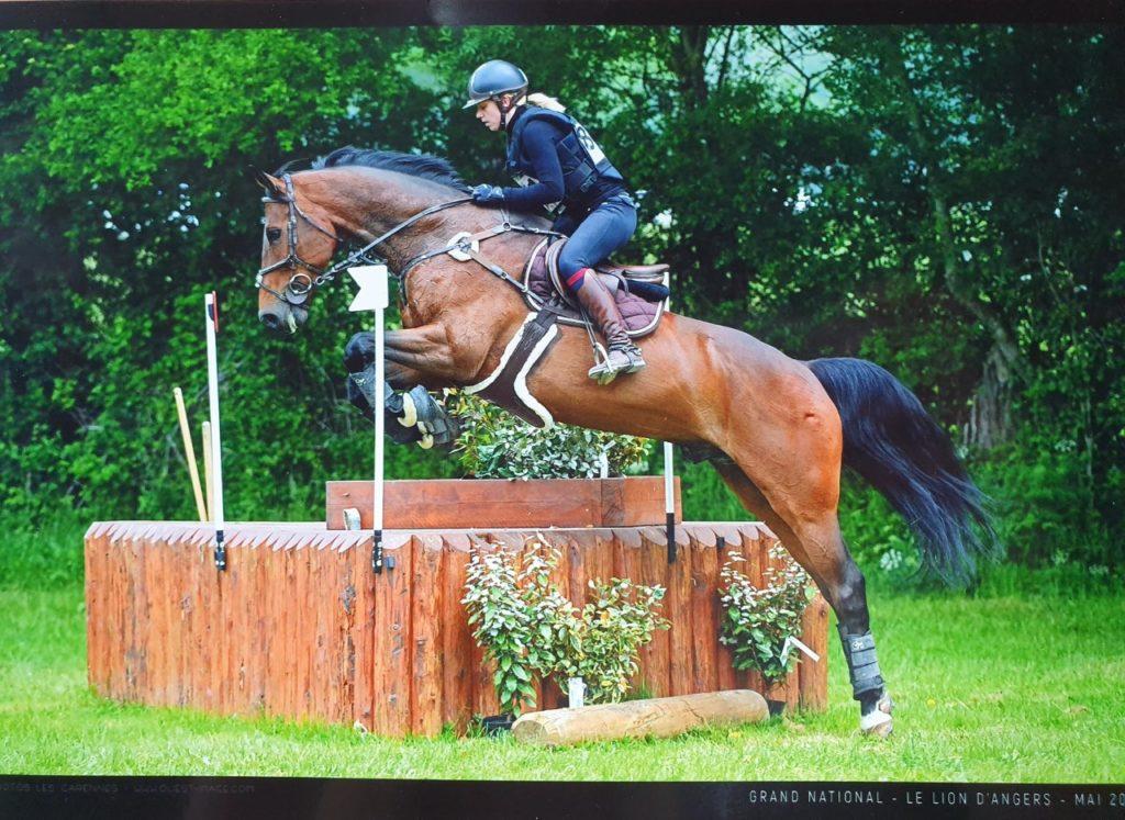 Dol de Bretagne : Cadero d'la Rousserie, meilleur 7 ans Amateur