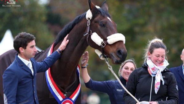 La fin de carrière d'un cheval