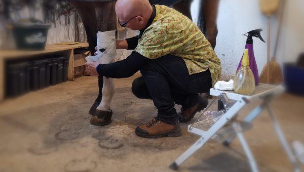 Journées du Complet : atelier «faire un pansement»