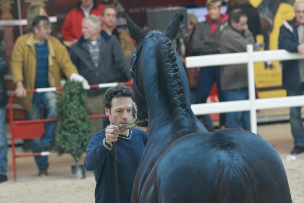 Entretien avec Pascal Trassart / élevage d'Argonne (2ème partie)