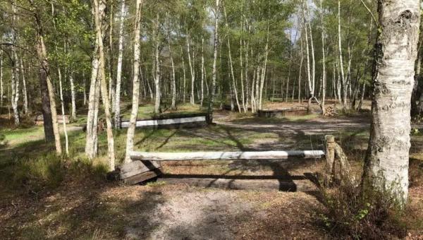 Un nouveau terrain de jeux à Poigny la Forêt