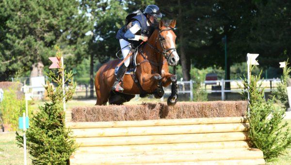 Sandillon : Chaleur et performance pour les jeunes chevaux