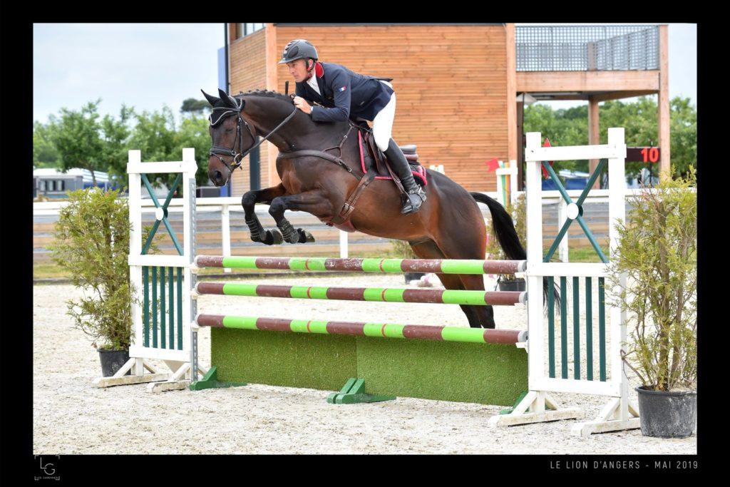 Les jeunes chevaux à l'honneur à Vernoil