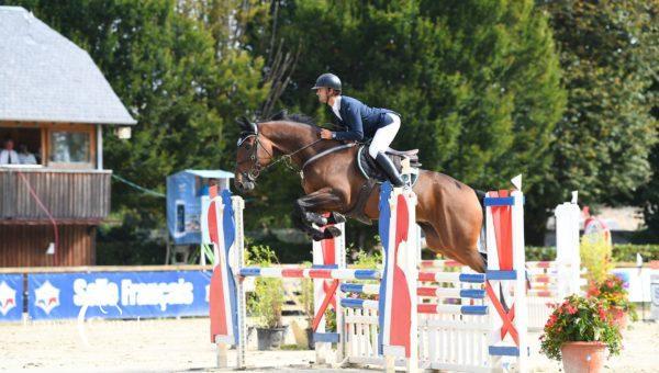 Pibrac, premier concours jeunes chevaux de l'année