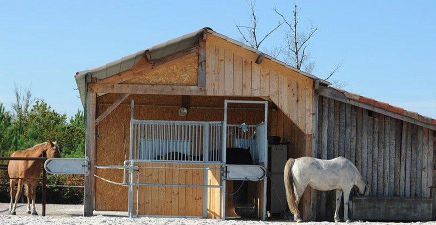 Journées du Complet : une conférence sur l'hébergement des chevaux de sport