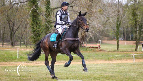 Les jeunes chevaux en formation au Mans !