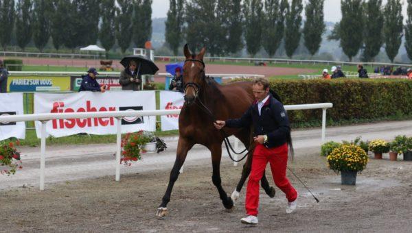 FEI EVENTING EUROPEAN CHAMPIONSHIP AVENCHES 2021 – J4 2è Inspection des chevaux